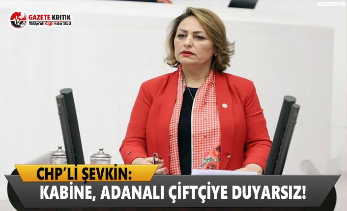 CHP'li Şevkin: Kabine, Adanalı çiftçiye duyarsız!