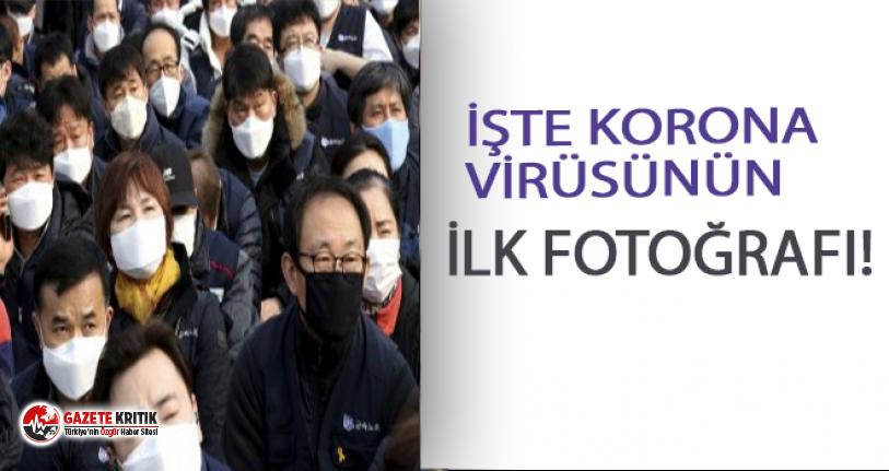 Koronavirüs'ün ilk fotoğrafı yayınlandı!