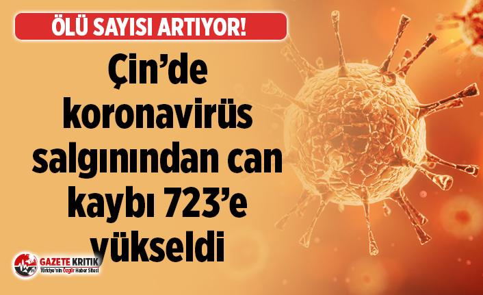 Çin'de koronavirüs nedeniyle ölenlerin sayısı 724'e yükseldi