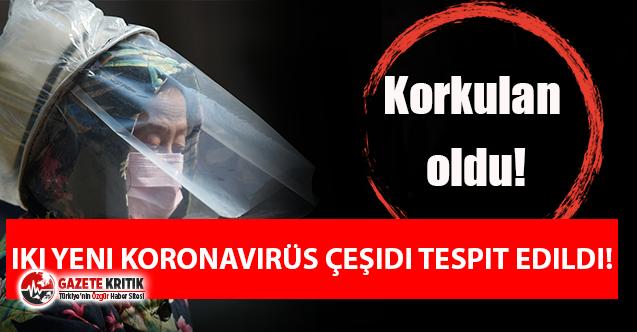 Çin'den flash koronavirüs açıklaması: İki yeni koronavirüs türü tespit edildi!