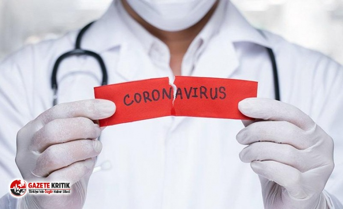 İyileşen hastaların antikorları koronayı tedavi edebilir mi?