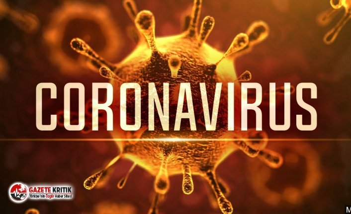Milli Eğitim Bakanılığı'ndan Coronavirüs açıklaması!