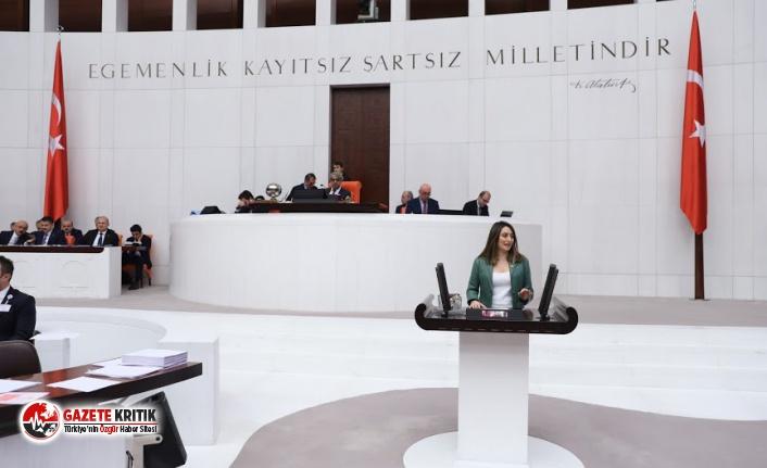 CHP'li Bankoğlu: ''Avukatlar Zorlu Koşullar Altında Bırakılıyor''