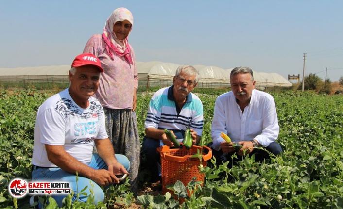 CHP'li Beko: Tarıma destek verilmemesi dehşet tablosudur!