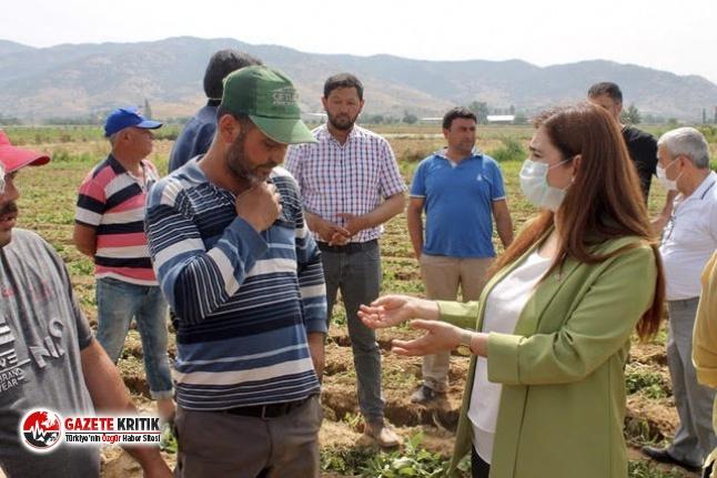 """CHP'li Kılıç: """"Çiftçi o kadar zor durumda ki 'yazık' deseler 'ağlayacak' durumda"""""""