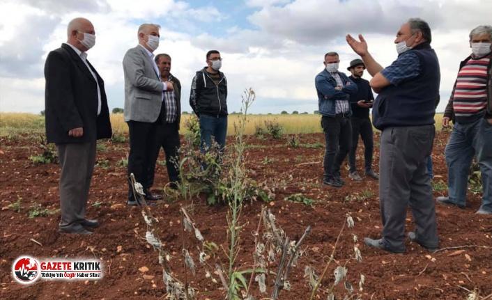CHP'li Sancar: Çiftçi bir an önce desteklenmelidir!