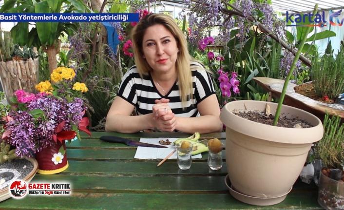 Kartal Belediyesi, Evde Bitki Yetiştirmek İsteyenler İçin YouTube Videoları Hazırladı