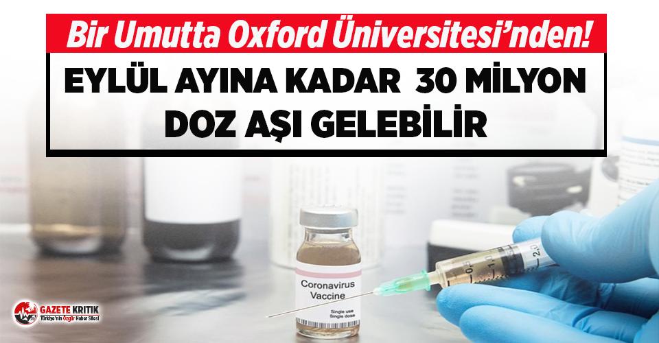Oxford Üniversitesi'nden Eylül'e kadar 30 milyon doz aşı umudu!