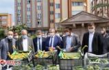 25 yıllık aradan sonra Edremit Belediyesi'nde hasat sevinci!