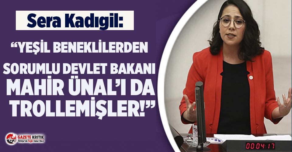 CHP'li Kadıgil:' Yeşil Beneklilerden Sorumlu Devlet Bakanı Mahir Ünal'ı Da Trollemişler!'
