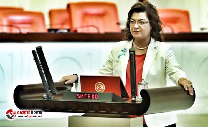 CHP'li Şahin, Payas'a neden hastane yapılmadığını Meclis gündemine taşıdı