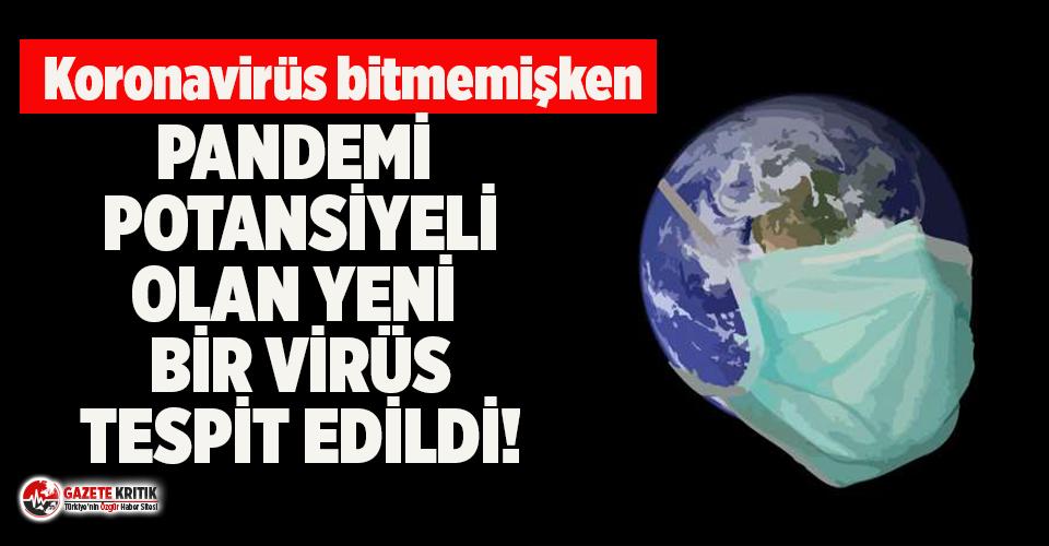 Çin'de pandemi potansiyeli olan yeni virüs tespit edildi! Domuzdan insana geçiyor