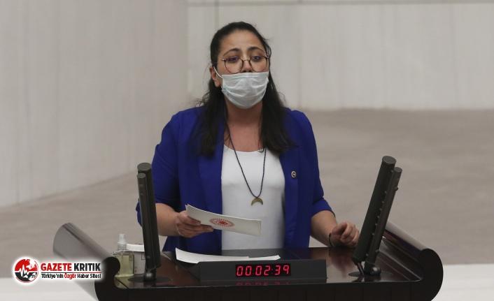 CHP'li Kadıgil, Soylu ve Gül'e sordu: 'LGBTİ+'lara saldırılar yüzde 110 arttı, önleyecek misiniz?'