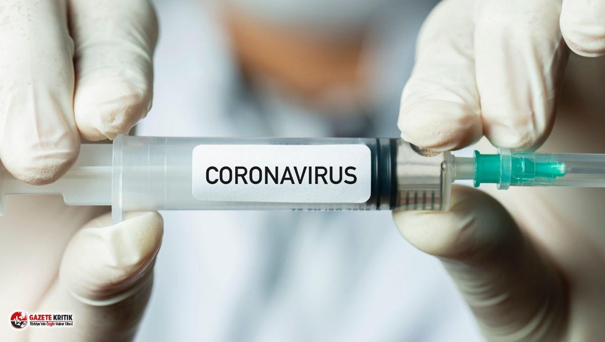 Koronavirüs aşısının fiyatı belli oldu!