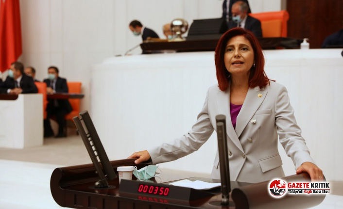 CHP'li Gülizar Emecan: Gazetelere ceza, binalara milyonlar