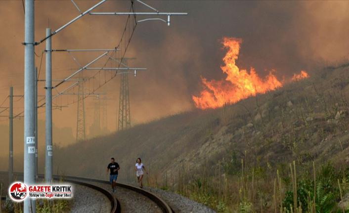 Bulgaristan-Türkiye sınırındaki yangın kısmen kontrol altına alındı