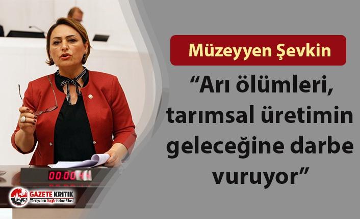 """CHP'li Şevkin: """"Arı ölümleri, tarımsal üretimin geleceğine darbe vuruyor"""""""