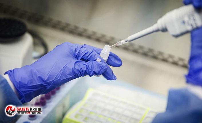 Çinli bilim insanları Rus Kovid-19 ilacının etkinliğini doğruladı