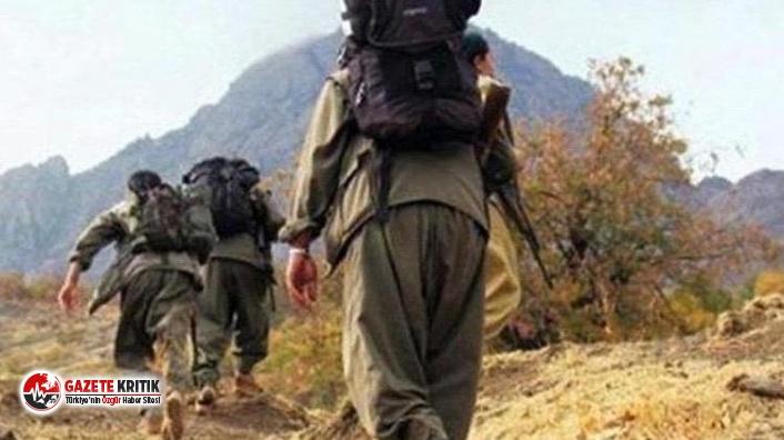 İçişleri Bakanlığı: 2 örgüt mensubu güvenlik güçlerine teslim oldu!