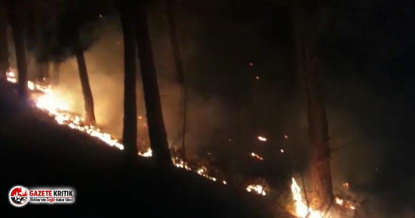 İzmir'deki orman yangını sürüyor