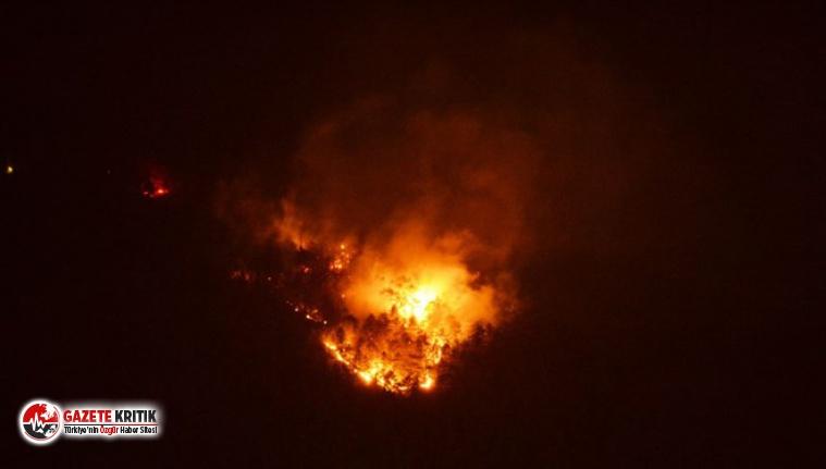 Karabük'te orman yangını!