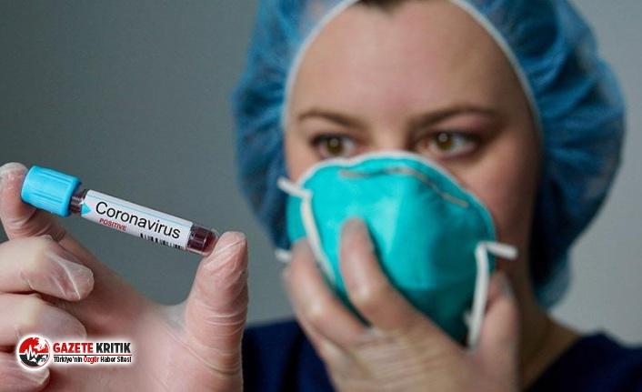 Koronavirüs araştırması: Koruması gereken organa saldırıyor