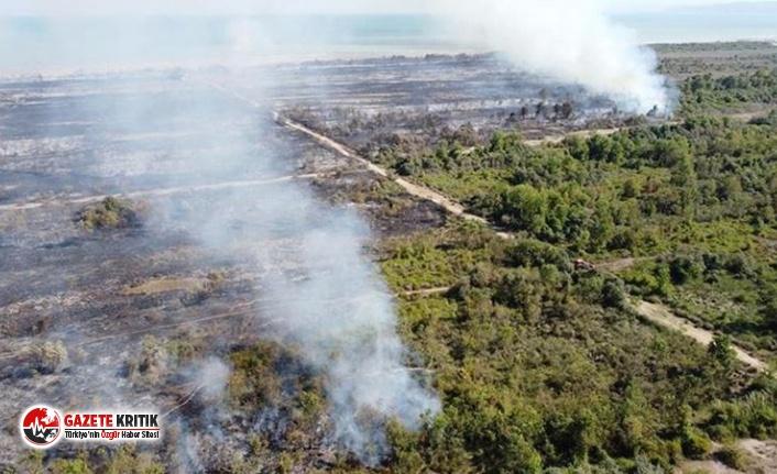 UNESCO Dünya Mirası Geçici Listesi'nde yer alan Kuş Cenneti'nde yangın