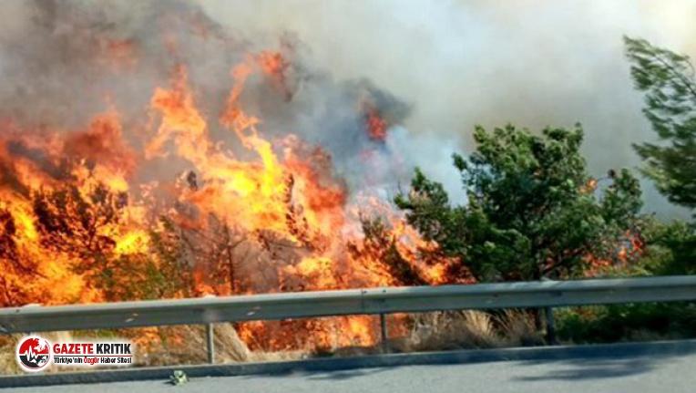 CHP heyeti Hatay'daki yangın bölgesine gidiyor