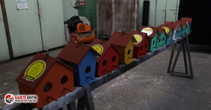 İBB Şehir Tiyatroları Dekorları Kuş Evlerine Dönüşüyor