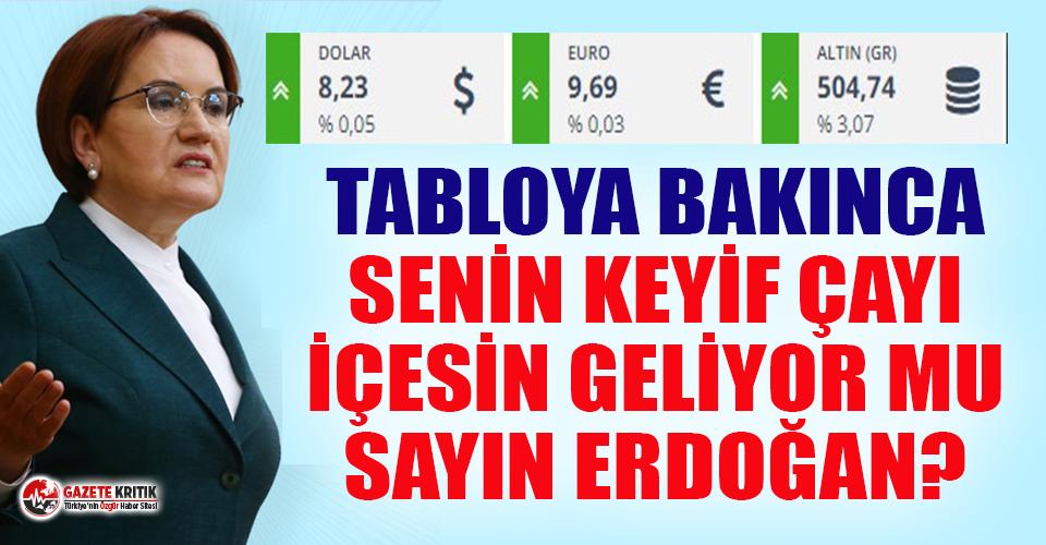 Meral Akşener: Dolar 8 lirayı geçmiş, Euro 10 liraya yürüyor, senin keyif çayı içesin geliyor mu sayın Erdoğan?