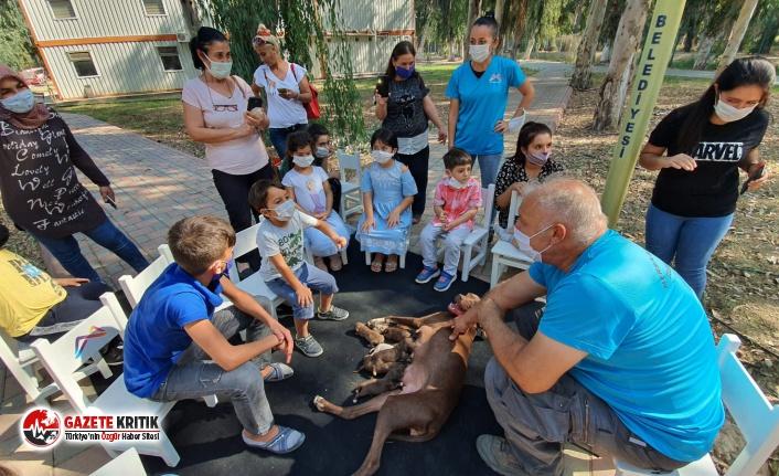 Mersin Büyükşehir, Çocuklara Hayvan Sevgisi Aşılıyor