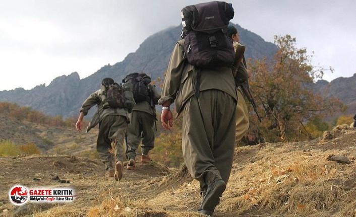 Son 10 günde 147 PKK/YPG'li terörist etkisiz hale getirildi