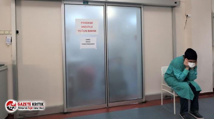 Mersin Tabip Odası: Günlük vaka sayısı 700'ün üzerinde