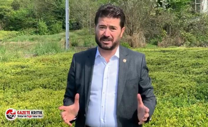 CHP'li Kaya'dan 'Çay-Kur' çağrısı: 'Yönetimde Trabzon'un temsili önemli