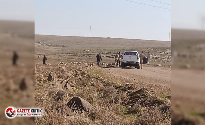 CHP'li Tanal hayvanları aç bıraktıran TİGEM ve iki bakanlığı şikayet etti
