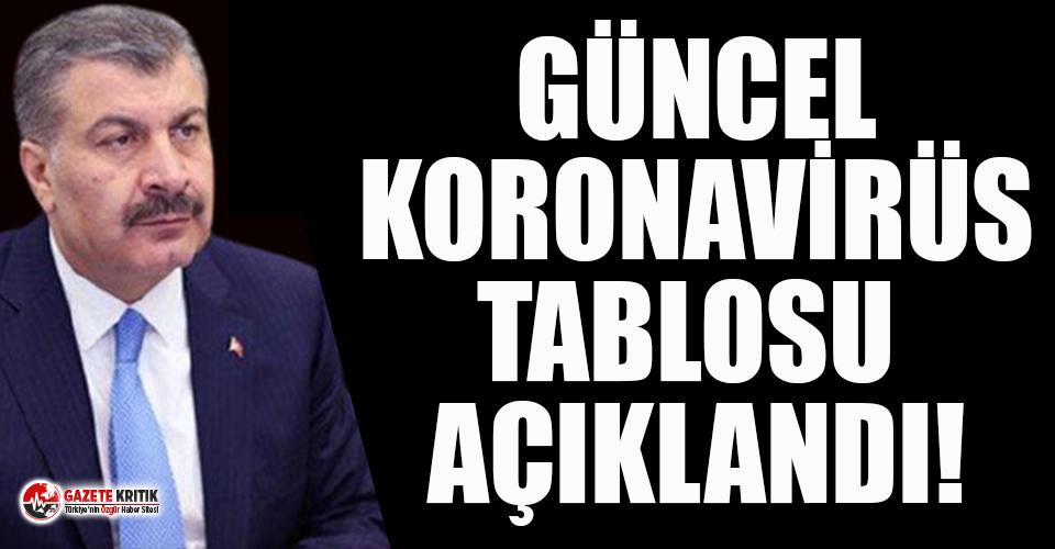 Türkiye'de koronavirüsten 176 kişi daha hayatını kaybetti! 9 bin 138 yeni vaka var