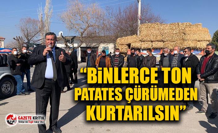 """CHP'li Gürer: """"Binlerce ton patates çürümeden kurtarılsın"""""""