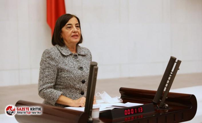 CHP'li Süllü Kızıl Geyiklerin Mücadelesini Meclis Gündemine Taşıdı