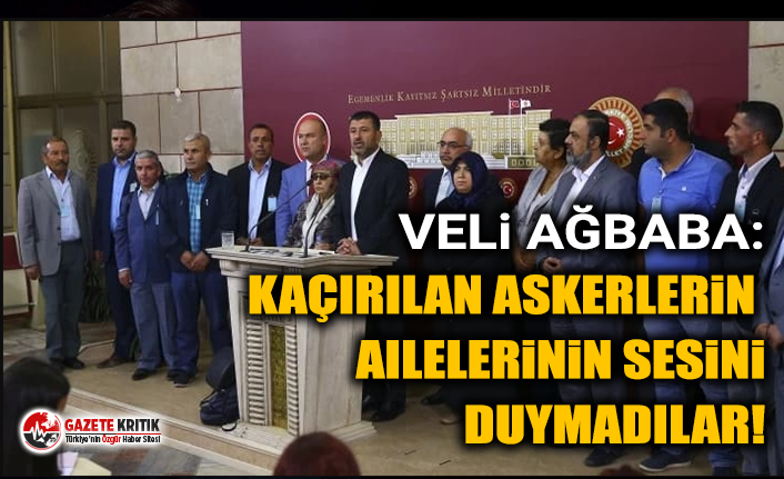 Veli Ağbaba: Kaçırılan askerlerin ailelerinin sesini duymadılar!