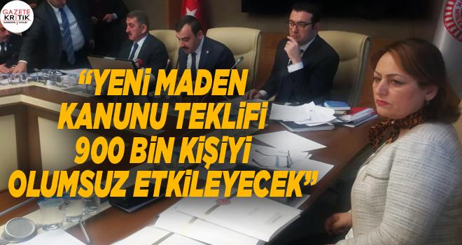 CHP'li Dr. Müzeyyen Şevkin'den 'Maden Kanunu Teklifi' eleştirisi