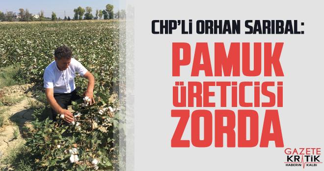 CHP'li Orhan Sarıbal: PAMUK ÜRETİCİSİ ZORDA
