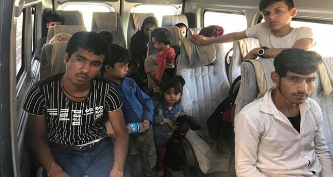 Çanakkale'de 44 kaçak göçmen yakalandı