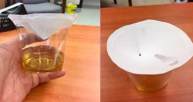 Bilim adamından meyve sineklerinden kurtulmak üzerine ipuçları