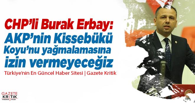 CHP'li Burak Erbay: AKP'nin Kissebükü Koyu'nu yağmalamasına izin vermeyeceğiz