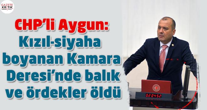 CHP'li Aygun:Kızıl-siyaha boyanan Kamara Deresi'nde balık ve ördekler öldü