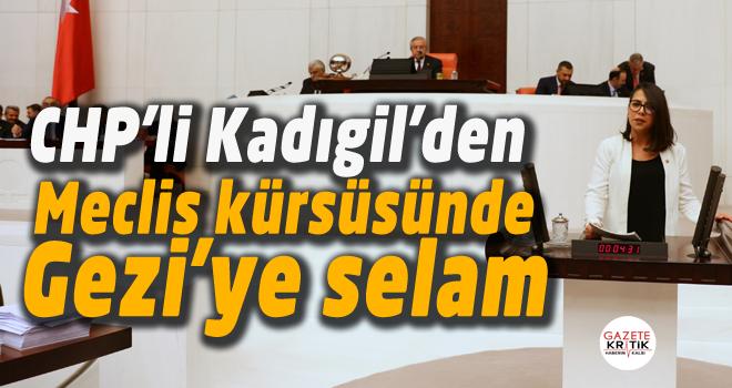 CHP'li Kadıgil'den Meclis kürsüsünde Gezi'ye selam
