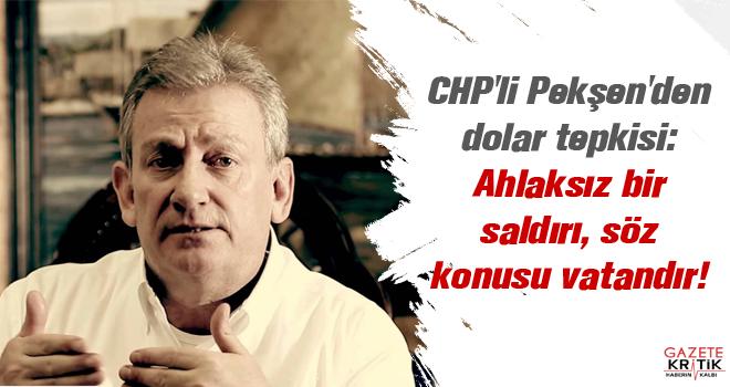 CHPli Pekşenden dolar tepkisi: Ahlaksız bir saldırı, söz konusu vatandır 51