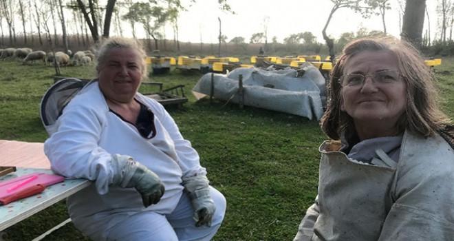 İznikli kız kardeşler yılda 1 ton bal üretiyor