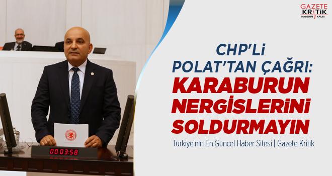 CHP'Lİ POLAT'TAN ÇAĞRI: KARABURUN NERGİSLERİNİ SOLDURMAYIN