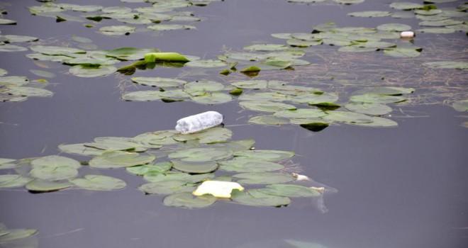 Doğaya atılan plastik atıklar her yıl artıyor